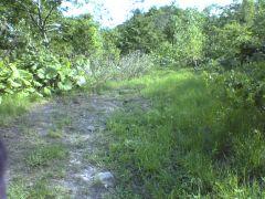 road06053.jpg